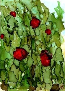 hedgerowsecretsjpg