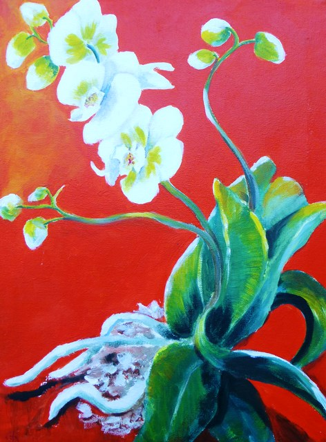 orchidjpg