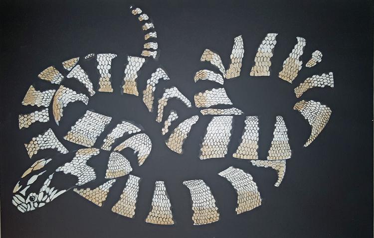snake750widejpg