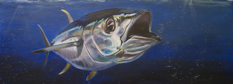 yellowfintuna750widejpg